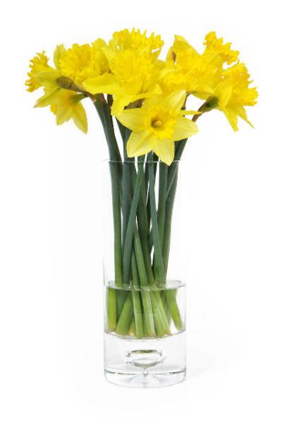 Astuce pratique la livraison de fleurs domicile for Livraison fleurs rennes
