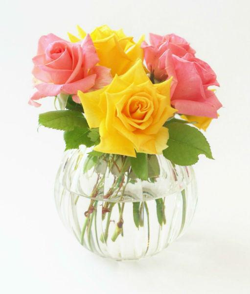envoyer des fleurs pas cher par internet livraison fleurs rennes pour toutes les occasions with. Black Bedroom Furniture Sets. Home Design Ideas